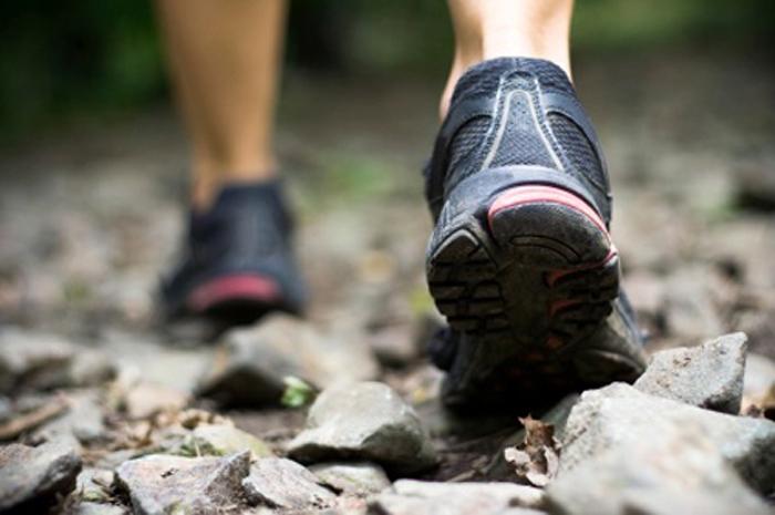 Chaussures marche nordique